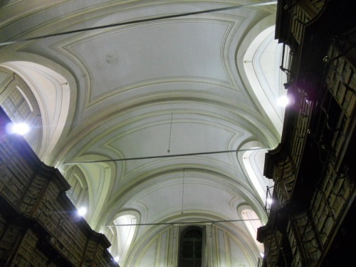 il bel soffitto della biblioteca vanvitelliana